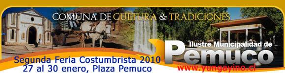 Segunda Feria Costumbrista Pemuco 2010