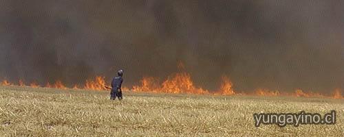 Plan de Aviso Para Quemas Agrícolas en Yungay