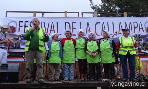fiestadelacallampa201410