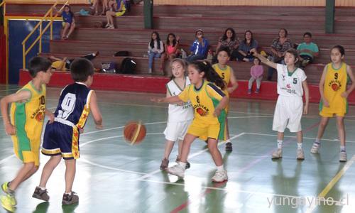 basquetbol20141115