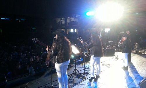 loshalconesnegros201412