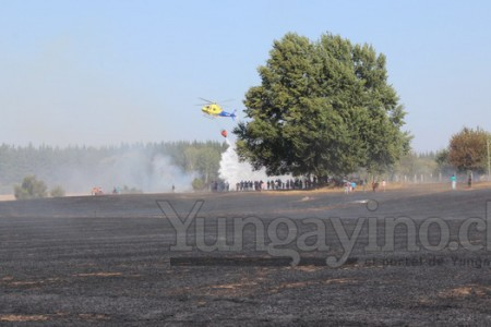 Incendio Afectó a Yungay y Onemi Bíobío Decretó Alerta Roja Para la Provincia de Ñuble