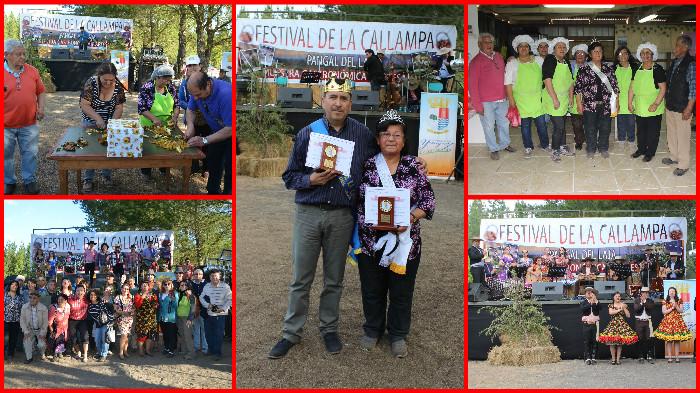 festival_callampa_2016