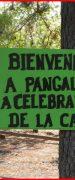 En Pangal del Laja se Realizará la Tradicional Fiesta de la Candelaria