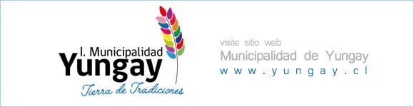 MUNICIPALIDAD DE YUNGAY / Sitio Web