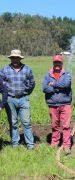 INDAP se Encuentra Apoyando Pequeños Proyectos de Riego en la Región de Ñuble