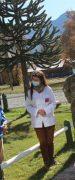 Diguillín: Control Sanitario en Pinto se Suma a los de Quillón, Bulnes y Yungay Para el Fin de Semana Largo