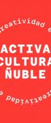 Seremi de las Culturas de Ñuble invita a artistas a presentar talleres y propuestas de difusión para ser parte de segunda etapa de la iniciativa de contingencia